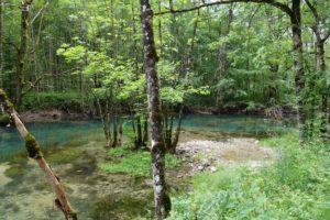 Biodiversitäts-Hotspots in Deutschfreiburg - 2 @ wird noch bekannt gegeben