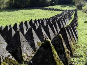 Panzersperre Biberenächer: Kulturgut mit ökologischem Wert @ Biberenächer (zwischen Gurmels und Liebistorf)